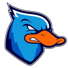 Lazio Ducks