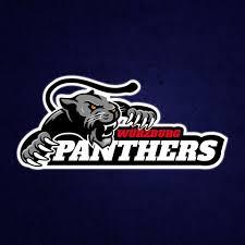Würzburg Panthers